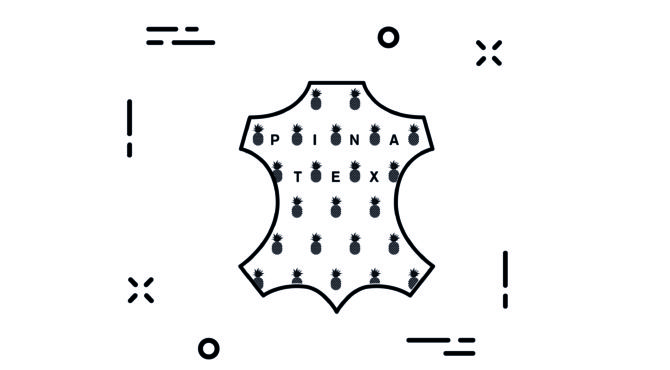 glossaire-lexique-pinatex