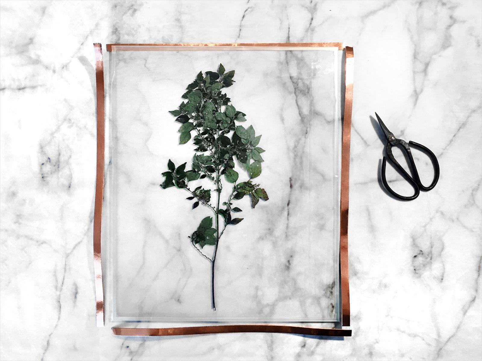 diy-herbier-cuivre-cadre-verre-do-it-yourself-inspiration-tendance-tutoriel