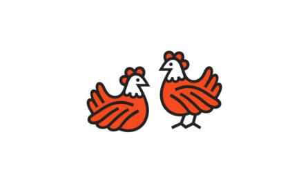 urbaines-poules-debarquent-ville-la-pigiste-blog-0