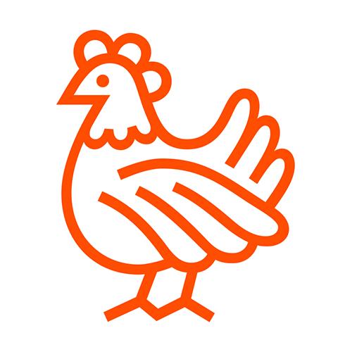urbaines-poules-debarquent-ville-la-pigiste-blog-2