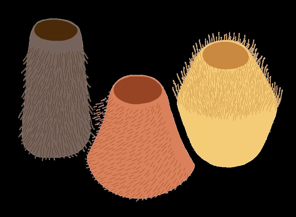des-vases-imprimes-en-3d-de-fibres-vegetales
