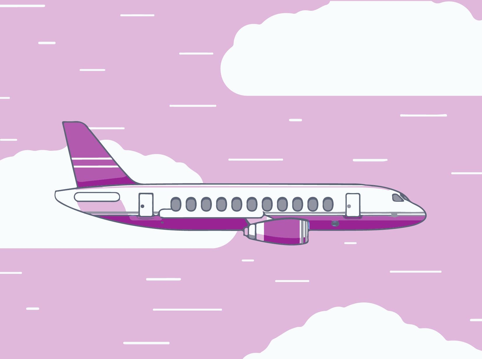 meilleur service dfab0 99b81 Mon expérience + mon avis sur la compagnie WOW air - La ...