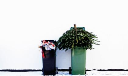 10-trucs-pour-un-noel-plus-ecolo-et-responsable
