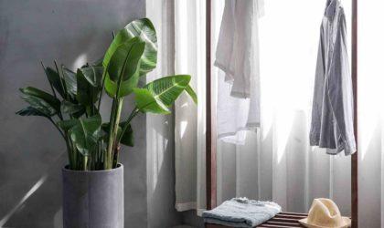comment-remedier-au-jai-rien-a-me-mettre-du-matin-minimalisme