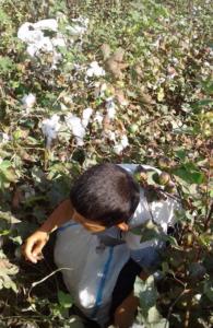 le-travail-des-enfants-dans-lindustrie-de-la-mode-1