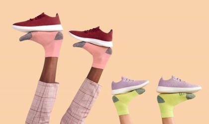 allbirds-les-sneakers-confo-et-ecolo-2